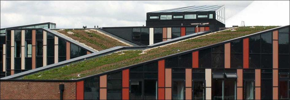 St Barts School Newbury Alumet